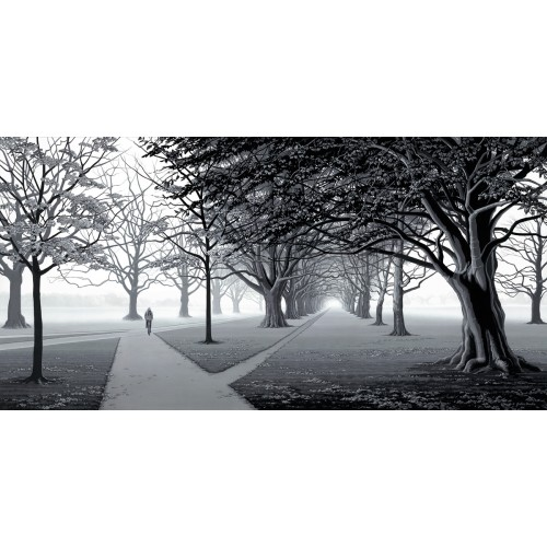 Out of the Mist, Hagley Park
